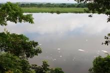 Vertidos de fábricas y aguas fecales que empiezan a flotar al caer la tarde y que se muestran en forma de espuma blanca