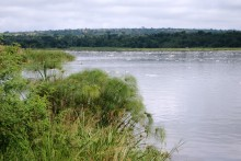 Vertidos de fábricas y aguas fecales que empiezan a flotar al caer la tarde y que se muestran en forma de espuma blanca. Papiros en la orilla