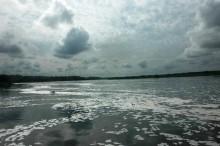 Vertidos en Nilo Blanco que aparecen al caer la tarde y que se manifiestan en forma de espuma sobre el agua