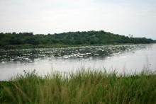 Vertidos tóxicos que se aparecen en el Lago Victoria y en el curso del Nilo Blanco al caer la atarde
