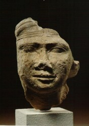 Fragmento de cabeza de estatua de una mujer Caliza 13,4 cm Mastaba D 207 Guiza inv nº 2445 din V-VI