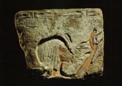 Relieve Nefertiti Caliza nubia 22 cm Templo Karnak inv nº 5126 din XVIII