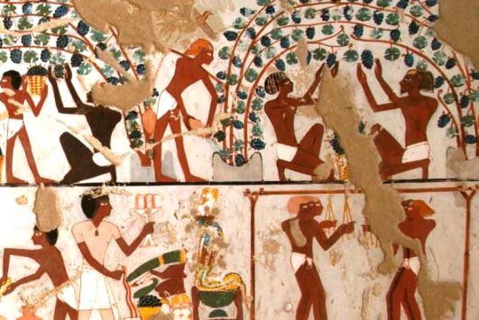 Página web sobre el vino en el Antiguo Egipto