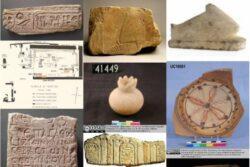 Proyecto Coptos, base de datos